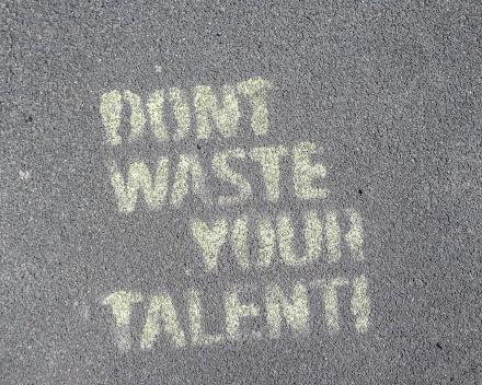 Infosessie: Zet jij al je talenten en drijfveren in om te slagen als ondernemer of in je job?