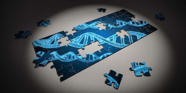 Workshop: DNA, Heb ik het juiste DNA om te doen wat ik graag wil?